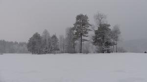 Sognsvann im Winter - ich kann auf dem Wasser laufen! Ok, auf gefrorenem Wasser...