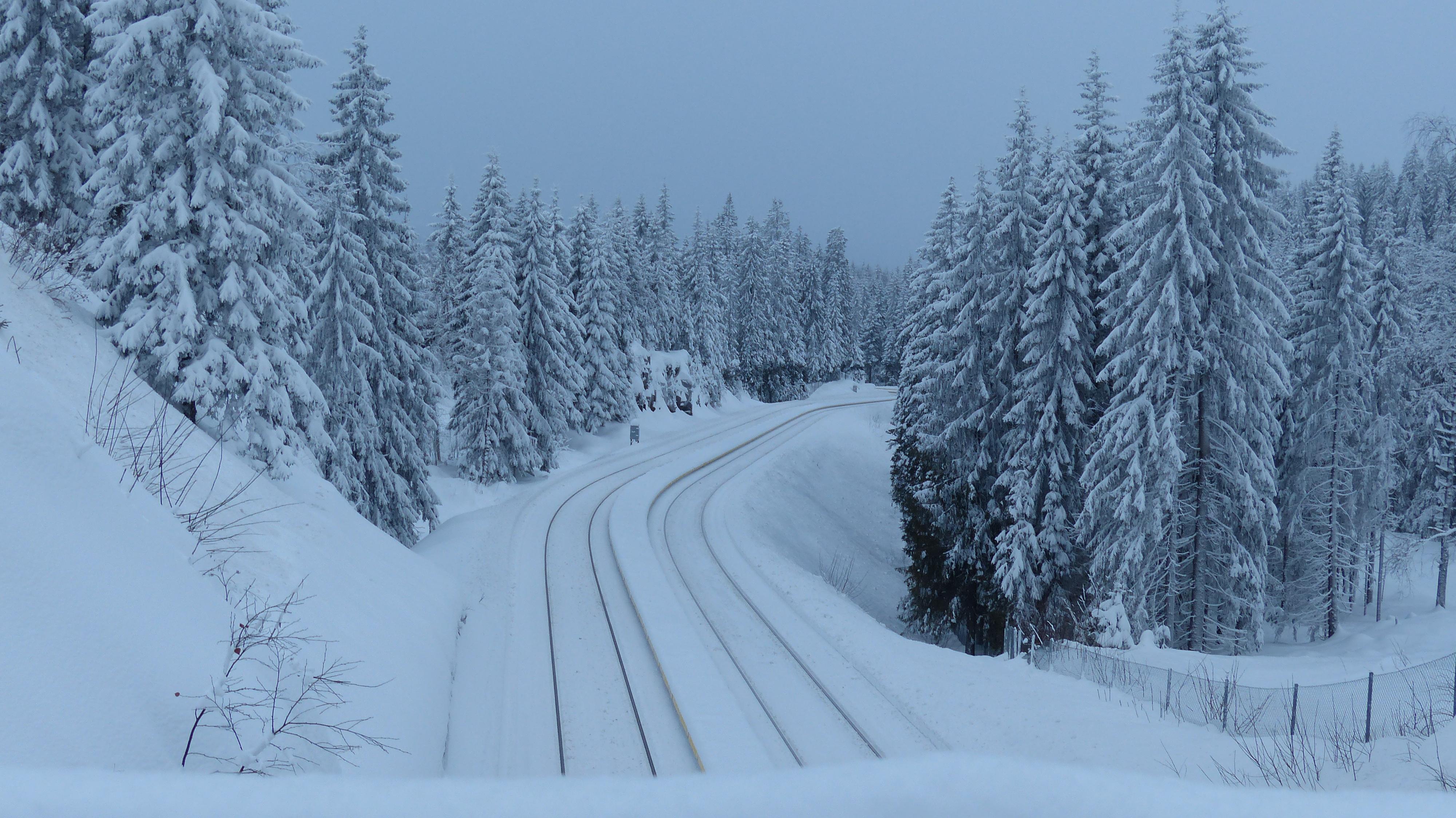 snow on the ground in jan? - Oslo Forum - TripAdvisor
