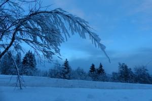 Schnee-Kunstwerke am Frognerseteren