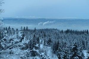 Blick über den Winterwald auf die Vororte von Oslo