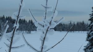 Schnee-Kunstwerke  vor dem Oslofjord