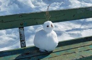 Der letzte Schneemann (?) - hoffentlich (zumindest für die nächsten 8 Monate