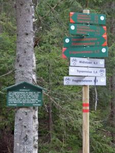 Die Loipen (rote Markierung) sind besser ausgeschildert als die Wanderwege