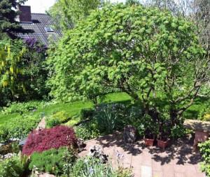 Garten Buchbrunn