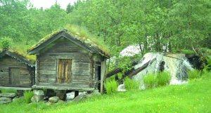 Herrlich bewachsene Schuppen im Fjell (=Gebirge)