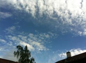 Endlich Sommer! und noch dazu Bayerischer Himmel...