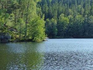 ... zu denen man am liebsten gleich hinschwimmen möchte...