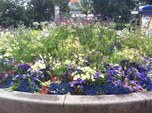 ... auf schöne Blumenarrangements ...