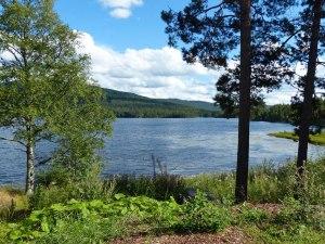 Ruhiger See mitten in der Wildnis auf dem Weg nach Heddal ...