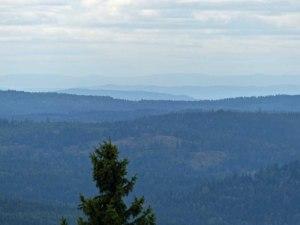 Ausblick in die Wildnis um Oslo vom Tryvannseteren