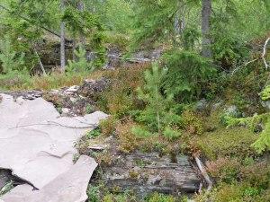 Norwegische Wildnis