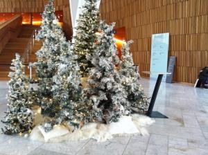 Zuerst ein paar Winterbilder, denn draußen war es kalt, aber nicht Schneereich: Winterlandschaft in der Oper
