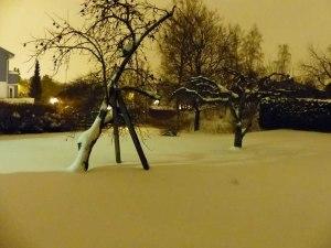"""""""Winter-Garten"""" :-)"""