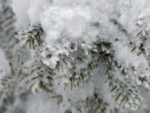 ... Winterbilder!