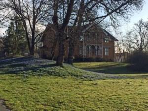 """""""Villa Kunterbunt"""" mit blauem Veilchen-Teppich"""