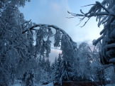 Winter-...