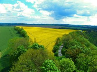 Farbenpracht in Thüringen