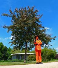 Orange-Men (soll hoffentlich nicht Trump sein... ;-) )