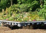 """... und oben: Die Flüssigkeit zum Düngen und Bewässern wird in den großen """"Komposthaufen"""" gewonnen."""
